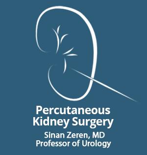 Kidney Stone Surgeon - Istanbul